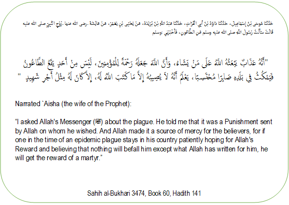 A hadith about the plague.